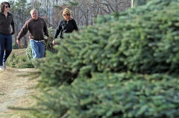Alyson Gile, left, visiting from Washington, D.C., gets a tree with her parents Ken and Teri Gile of Averill Park at McDonough's Farm on Friday, Nov. 27, 2015, in East Greenbush N.Y. (Michael P. Farrell/Times Union) Photo: Michael P. Farrell / 10034339A