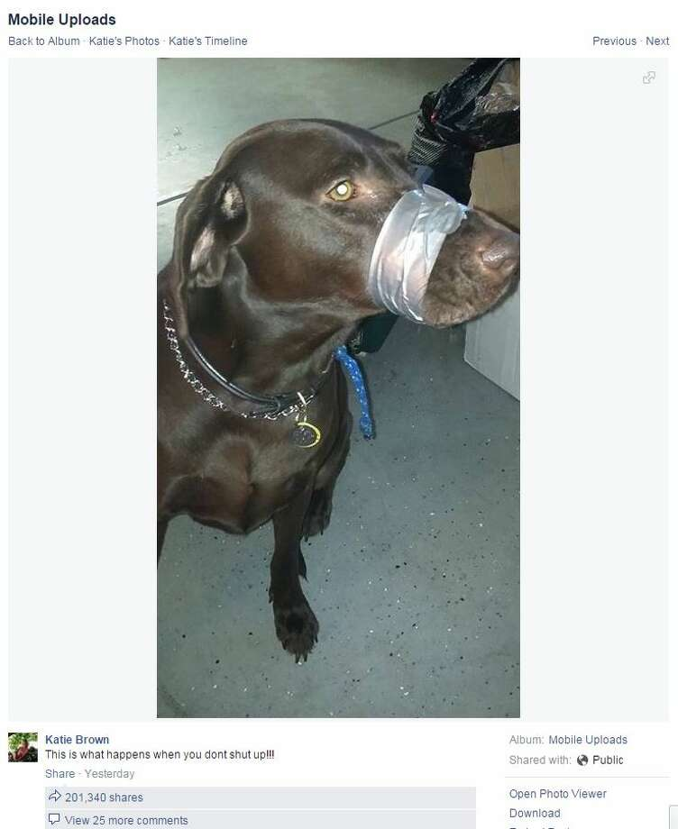 A Florida woman on Facebook shared this photo of a dog with its mouth wrapped in duct tape. Police are now investigating this incident.