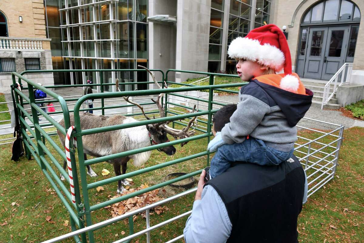 Vinnie Karl, 2, of Guilderland sits atop his father, T.J. Karl, as they watch Buddy, a 5-year-old reindeer, during Home for the Holidays free admission weekend on Saturday, Nov. 28, 2015, at Albany Institute of History and Art in Albany, N.Y. The event continues, sans reindeer, on Sunday from noon to 4:30 p.m. (Cindy Schultz / Times Union)