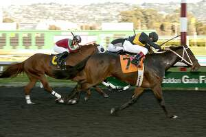 Poshsky takes Berkeley Handicap at Golden Gate Fields - Photo