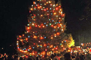 Christmas tree lighting Friday at Newtown's Ram Pasture - Photo