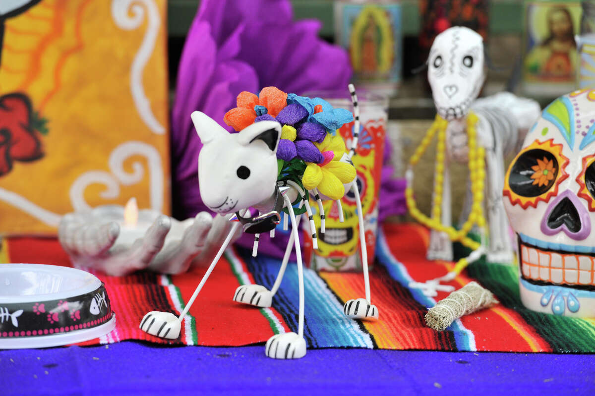 Pets were part of a Dia de Los Muertos themed fundraiser recently at The Cove, benefiting SnipSA.