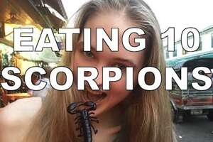 What happens when a model eats 10 scorpions - Photo