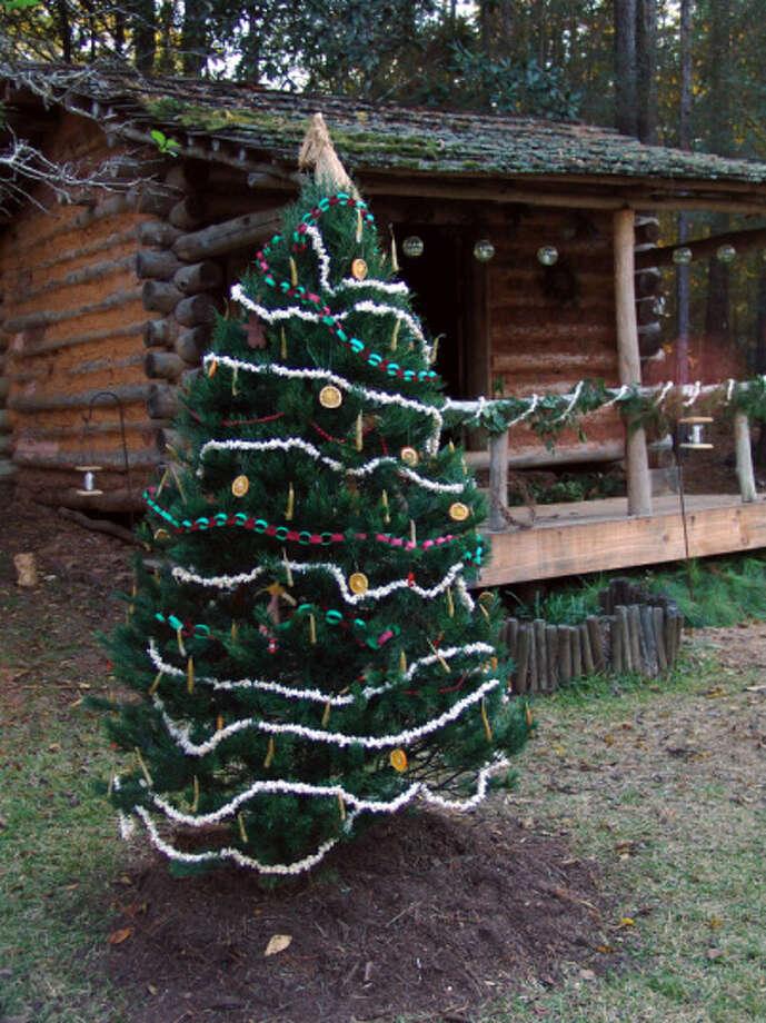 : The Jesse H. Jones Park and Nature Center's Christmas Tree