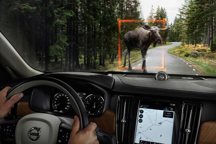 "The ""Interior Large Animal Detection System"" in the new Volvo S90 sedan. Photo: Volvo"