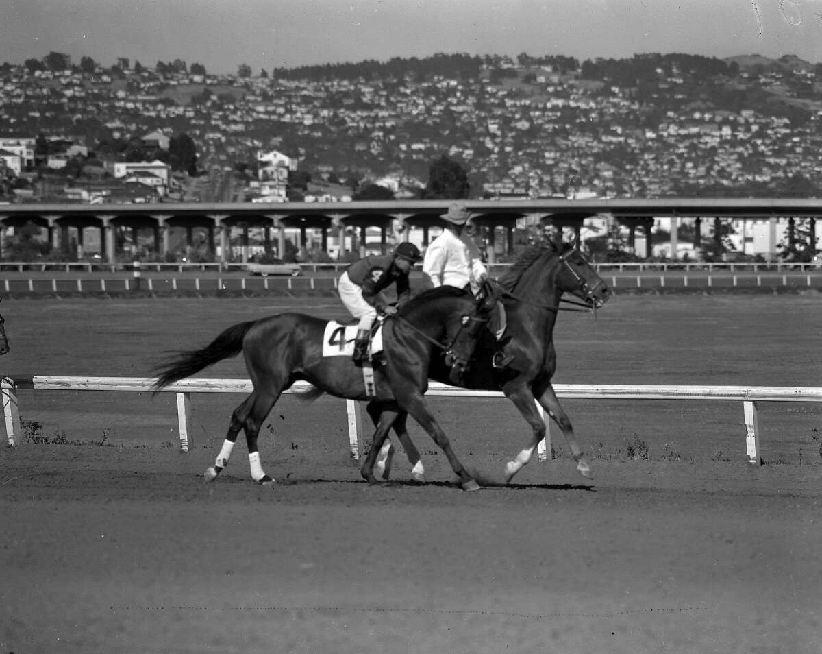Citation vs Noor at Golden Gate Fields, Enveloped stamped 07/21/1950, but likely the June 24, 1950 race Chronicle photographers Bill Young Bob Campbell & Clem Albers are stamped on envelope as well