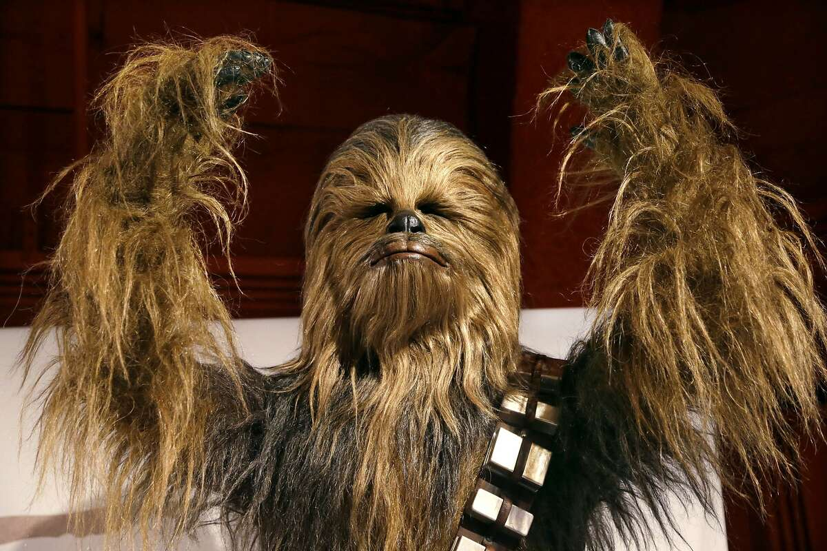 """In this photo taken Thursday, Jan. 29, 2015, a yak hair and mohair costume of the Wookiee Chewbacca is displayed as part of an exhibit on the costumes of Star Wars at Seattle's EMP Museum. The creators of the new exhibit, with 60 original costumes from the six Star Wars movies, are hoping to gather geeks, fashionistas and movie fans together to discuss how clothing helps set the scene. The exhibit, """"Rebel, Jedi, Princess, Queen: Star Wars and the Power of Costume,"""" will be in Seattle through early October and then travel across the United States through 2020. (AP Photo/Elaine Thompson)"""