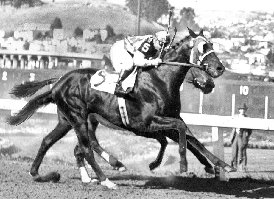 Noor leads Citation by a nose in the Forty Niners Handicap at Golden Gate Fields on June 17, 1950. Photo: Duke Downey, The Chronicle
