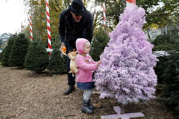 18-month-old Savannah Roach feels a Christmas tree painted pink with Christopher Roach at Clancy's Christmas Trees in San Francisco, California, on Wednesday, Dec. 2, 2015.