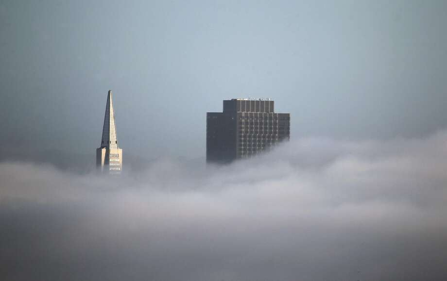 The Transamerica Pyramid and 555 California skyscrapers rise above a low layer of fog in San Francisco, Calif. on Friday, Dec. 4, 2015. Photo: Paul Chinn, The Chronicle