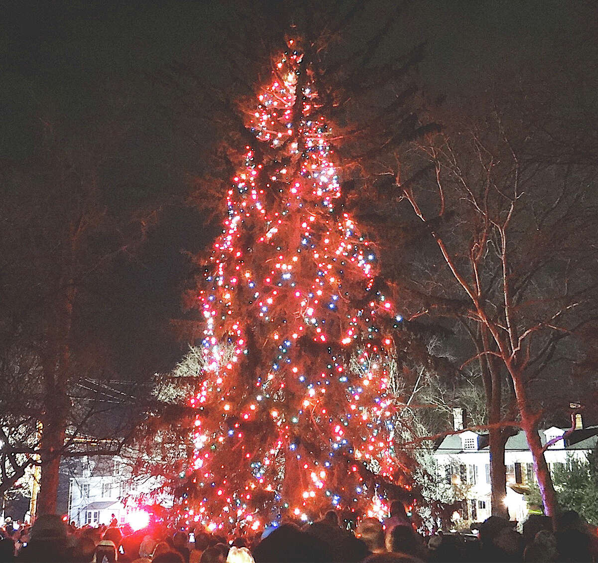 The 90-foot-tall Norway spruce tree -- believed to be the tallest live tree illuminated for the holidays in the state -- glows on Town Hall Green after the annual lighting ceremonies Friday evening.