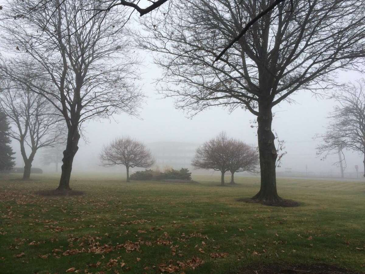 A dense fog advisory was in affect Sunday morning, Dec. 6, 2015 as temperatures were at or below freezing overnight, but the atmosphere was expected to warm into the 50s during the day. The scene is outside the Times Union office on Albany-Shaker Road in Colonie. (Lauren Stanforth)