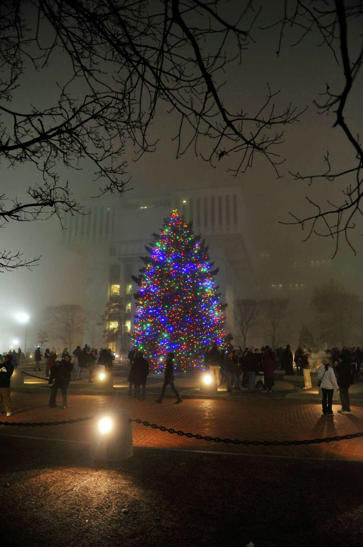 Children and adults look at and take pictures of the Christmas tree on the Empire State Plaza during the official tree lighting ceremony on Sunday, Dec. 6, 2015, in Albany, N.Y. (Paul Buckowski / Times Union)