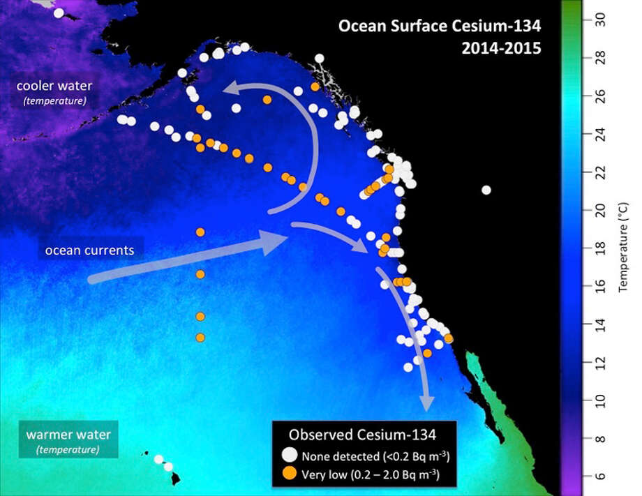 Woods Hole caption: Map shows the location of seawater samples taken by scientists and citizen scientists that were analyzed at the Woods Hole Oceanographic Institution for radioactive cesium as part of Our Radioactive Ocean. Cesium-137 is found throughout the Pacific Ocean and was detectable in all samples collected, while cesium-134 (yellow/orange dots), an indicator of contamination from Fukushima, has been observed offshore and in select coastal areas. (Figure by Jessica Drysdale, Woods Hole Oceanographic Institution)
