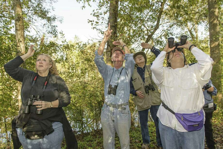 Birding instructor Kristine Rivers, left, leads students Rob Crenshaw of Friendswood and Bob Wells and Karen Scott of Pearland during a trip to Christia V. Adair Park through a class sponsored by the city of Pearland.  Photo: ÂKim Christensen, Photographer / ©Kim Christensen