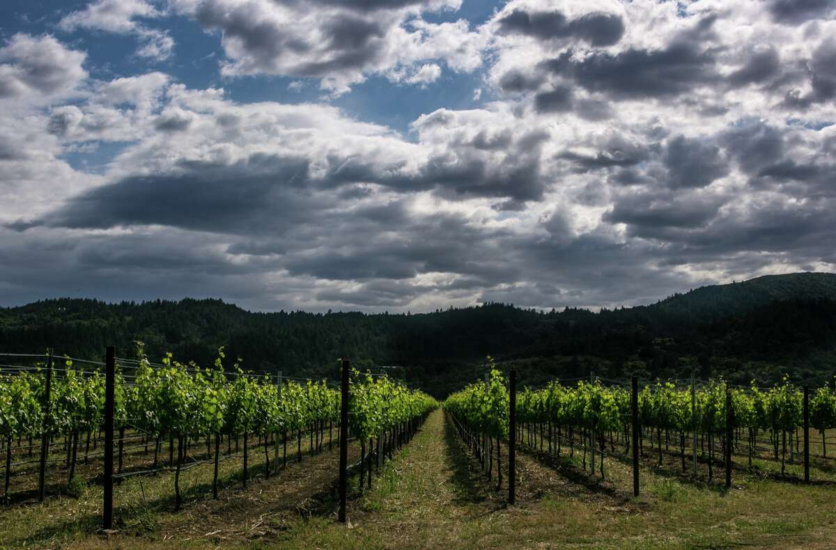 Dramatic clouds hug the mountains to the west of Robert Mondavi Winery on May 7, 2015, in Oakville, California.