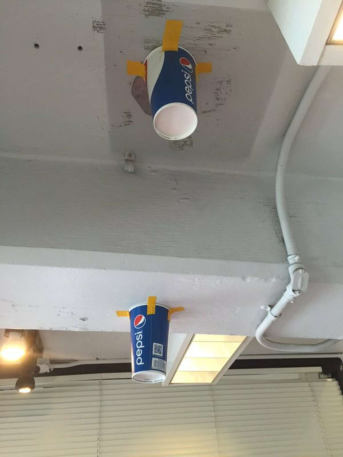 Cups taped to the ceiling of the Oakland Coliseum to catch leaks.