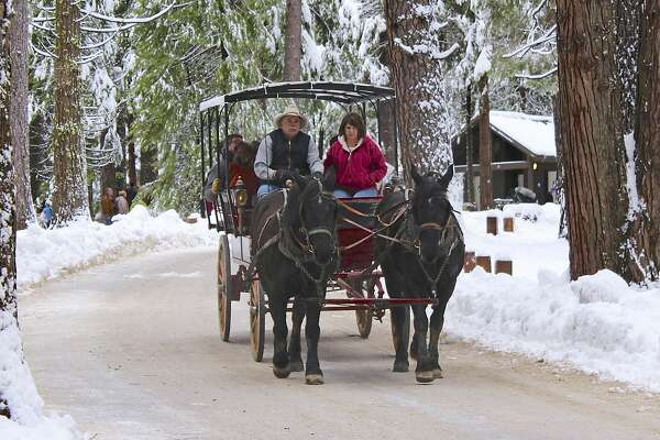 A carriage ride through snow-dusted Giant Sequoias is one of many winter treats on tap at Calaveras Big Trees State Park's Winter Wonderland Carnival.