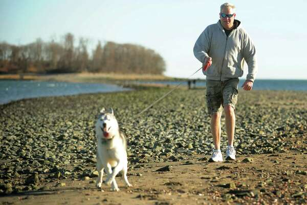 Bob Iacozza of Milford was warm enough to wear shorts for a walk out to Charles Island with his dog Moose at Silver Sands Park in Milford on Thursday, January 10, 2013.