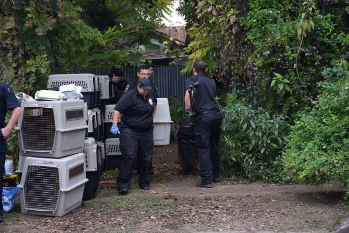 ACS workers seized around 100 animals of a wide variety of species and breeds from inside a home in the 200 block of Pendleton Avenue on Dec. 11, 2015.