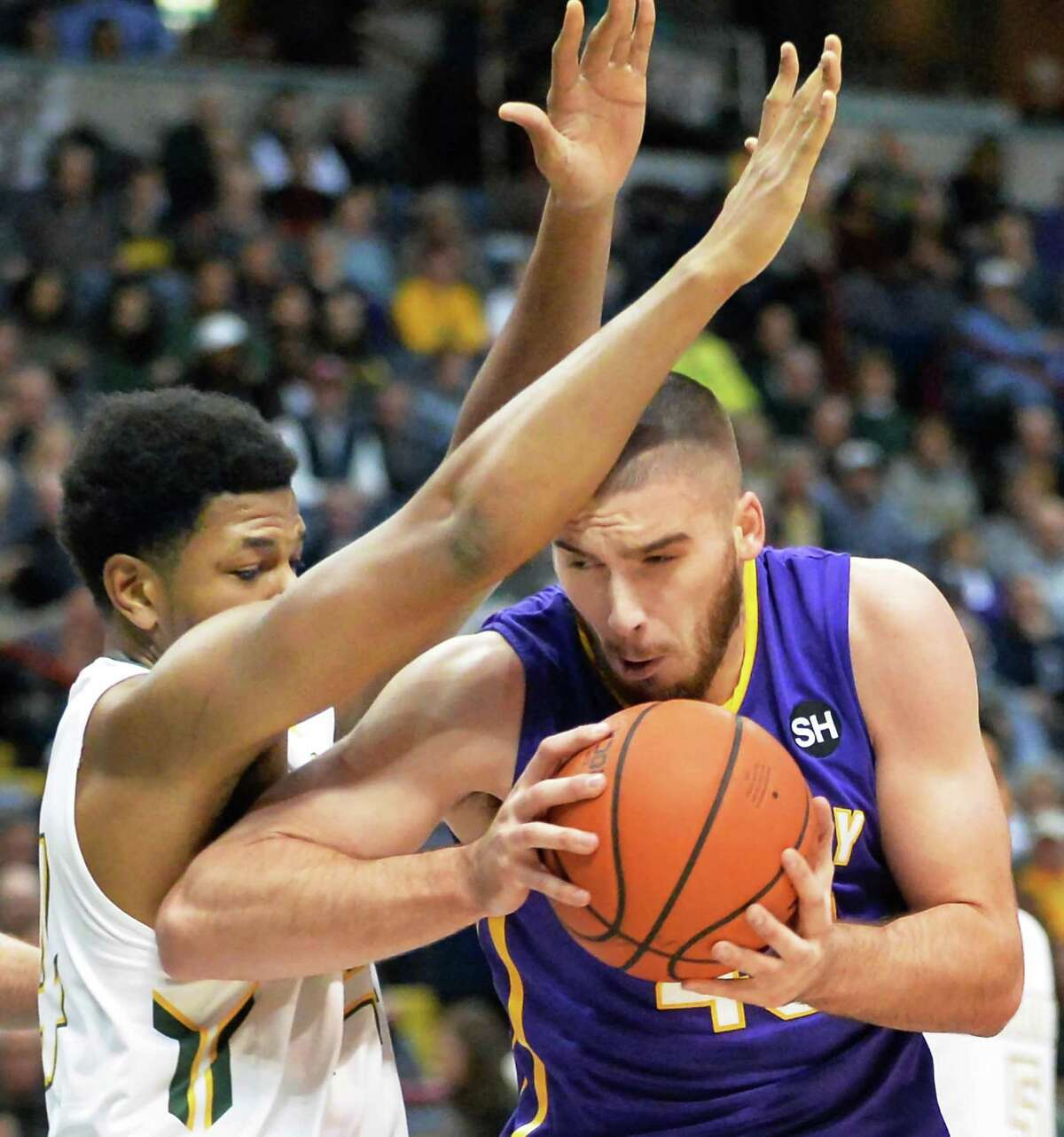 UAlbany's #43 Greig Stire battles Siena's #24 Lavon Long, left, during Saturday's game at the Times Union Center Dec. 12, 2015 in Albany, NY. (John Carl D'Annibale / Times Union)