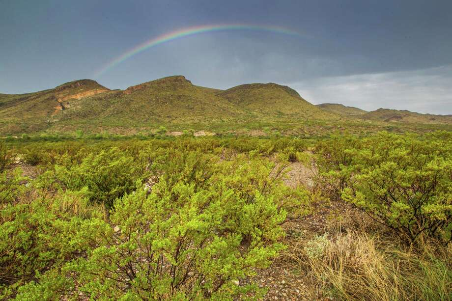 Big Bend National Park is the size of Rhode Island with a spectacular diversity of birds.  Photo Credit:  Kathy Adams Clark.  Restricted use. Photo: Kathy Adams Clark / Kathy Adams Clark/KAC Productions