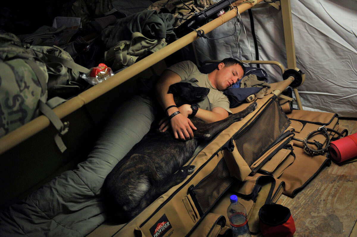 This photograph taken July 24, 2011 shows US Army Sergeant Nathan Arriaga of the US Forces Afghanistan K-9 unit, sleeping with Zzarr, a 6-year old Dutch Shepherd at the Forward Operating Base Walton before a patrol mission in the Arghandab district. Zzarr who has a rank of Staff Sergeant is a military working dog trained to detect bombs and improvised explosive devices (IED) and currently deployed in southern Afghanistan saving lives of coalition forces in its war against Taliban insurgents. Both Zzarr and K-9 handler Sgt. Arriaga did their first combat duty in Iraq in 2009. AFP PHOTO / ROMEO GACAD