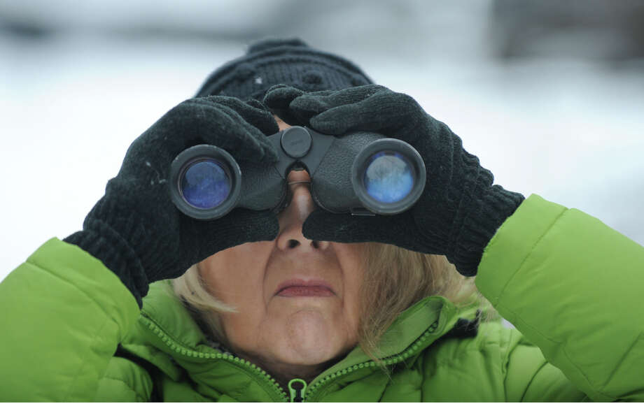 """Polly Hartman looks for birds at the Five Rivers Environmental Education Center in New Scotland, New York January 1, 2010 on the occasion of the 30th Anniversary of the """"Albany's First Morning"""" count of the bird species at the center.   (Skip Dickstein / Times Union) Photo: Skip Dickstein / 00006925A"""