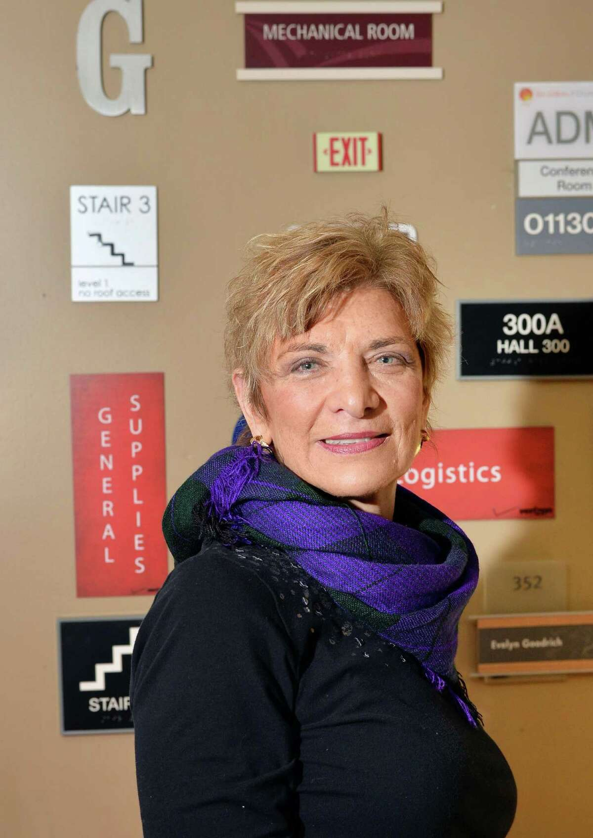 Lorraine Martin, owner of M3 Signs Plus, in her office Wednesday Nov. 18, 2015 in Slingerlands, NY. (John Carl D'Annibale / Times Union)