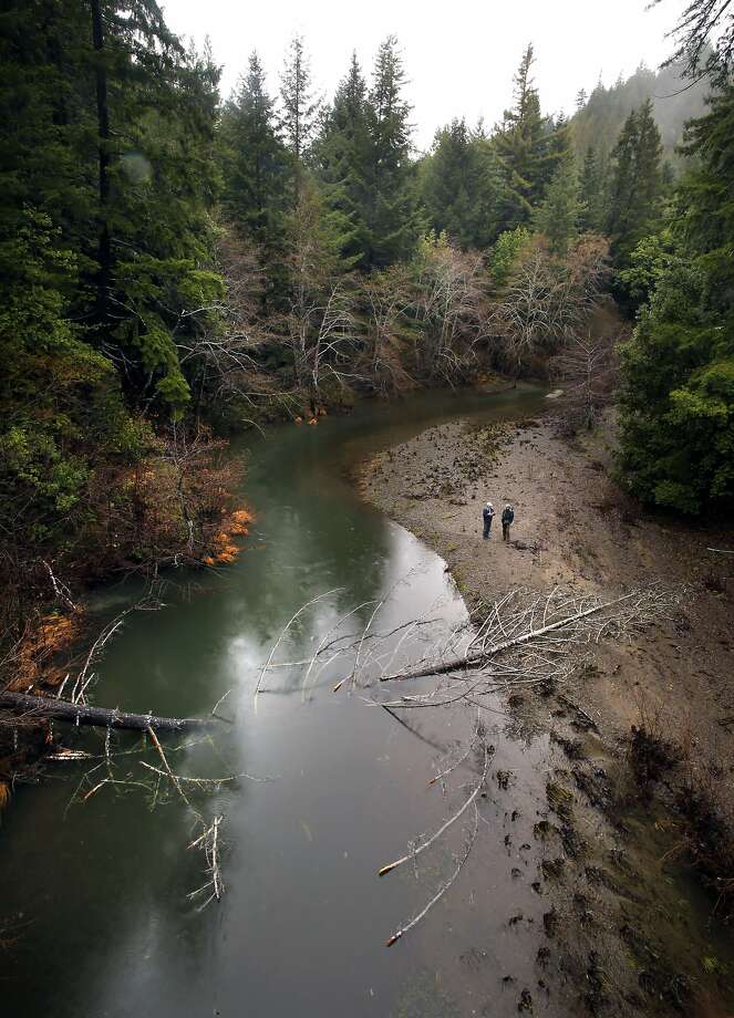 Chris Kelly (left), the California program director, and forester Madison Thomson of the Conservation Fund stand on the banks of the Big River near Fort Bragg . Photo: Michael Macor, The Chronicle
