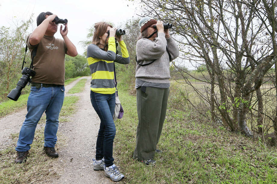 Carlos Ross, Madeleine McDonald, 17, and Sheridan Coffey look for birds on Bird Pond for the annual Christmas Bird Count at the Mitchell Lake Audubon Center, 10750 Pleasanton Rd, on Sunday, Dec. 20, 2015.  Eleven subgroups of local  birders surveyed a 15-mile radius from dawn to dusk, recording every bird they could find.  The Christmas Bird Count is an annual citizen science tradition that dates back 50 years in San Antonio and 100 years worldwide through the Audubon Society.  MARVIN PFEIFFER/ mpfeiffer@express-news.net Photo: Marvin Pfeiffer, Staff / San Antonio Express-News / Express-News 2015