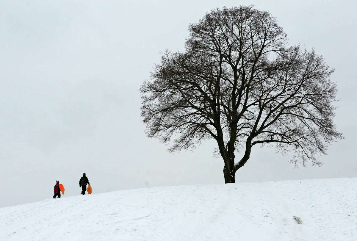 Logan Dittmer, 12, of Albany and his brother Ian, 24, right, climb a hill while sledding at Capital Hills at Albany on Thursday, Dec. 11, 2014 in Albany, N.Y. (Lori Van Buren / Times Union)