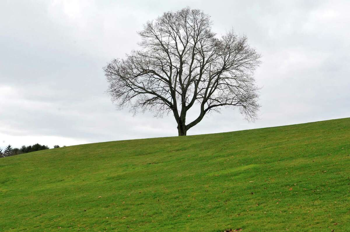A view of Capital Hills at Albany golf course on Thursday, Dec. 20, 2015, in Albany, N.Y. (Paul Buckowski / Times Union)
