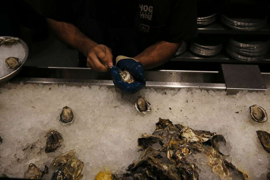 JosŽ Romo shucks oysters at Hog Island Oyster Co Inc in Oxbow Public Market Dec. 18, 2015 in Napa, Calif. Photo: Leah Millis, San Francisco Chronicle