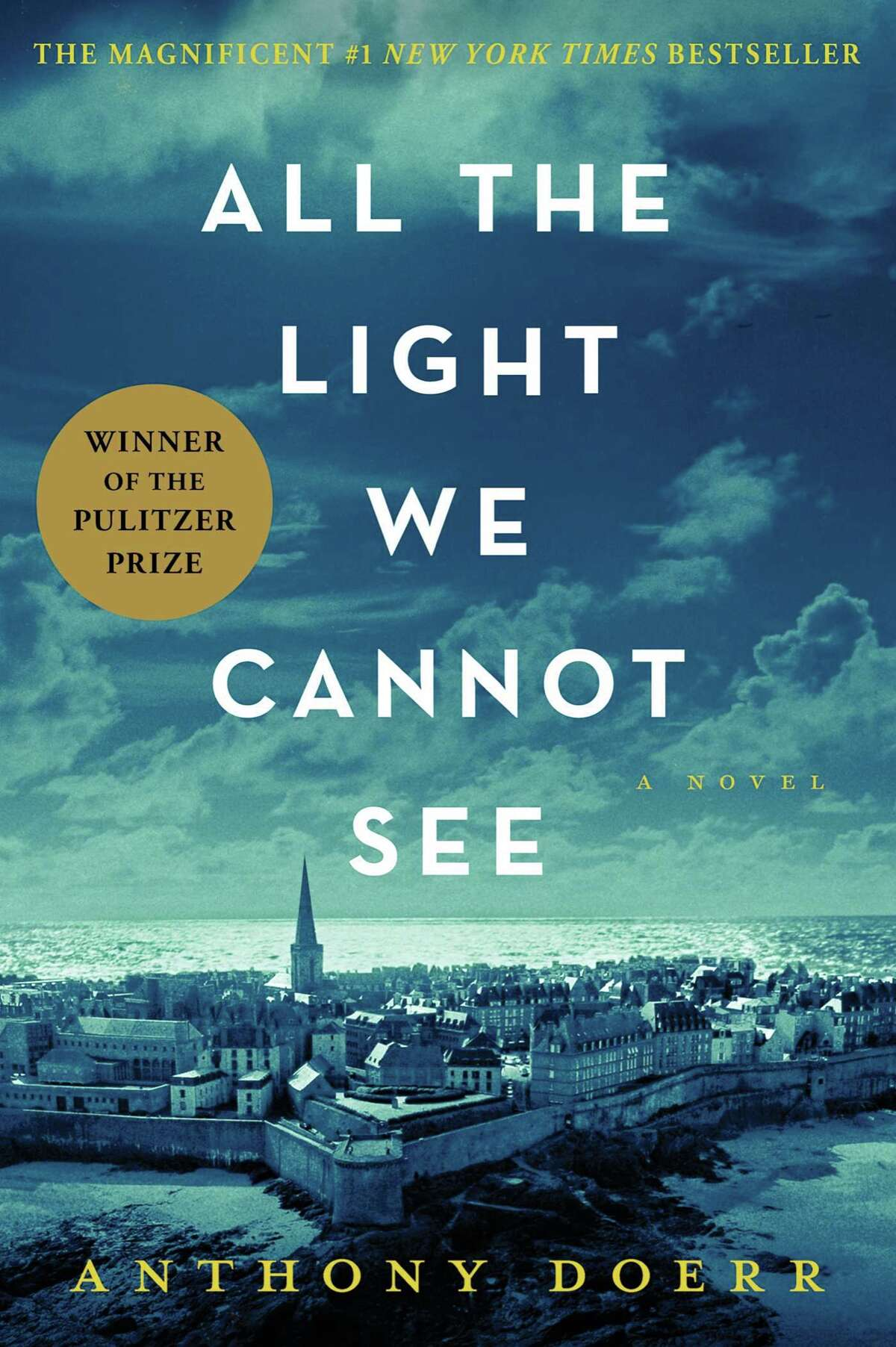 These were the top 15 most popular fiction books at Albany Public Library in 2015: 1) All the Light We Cannot See by Anthony Doerr