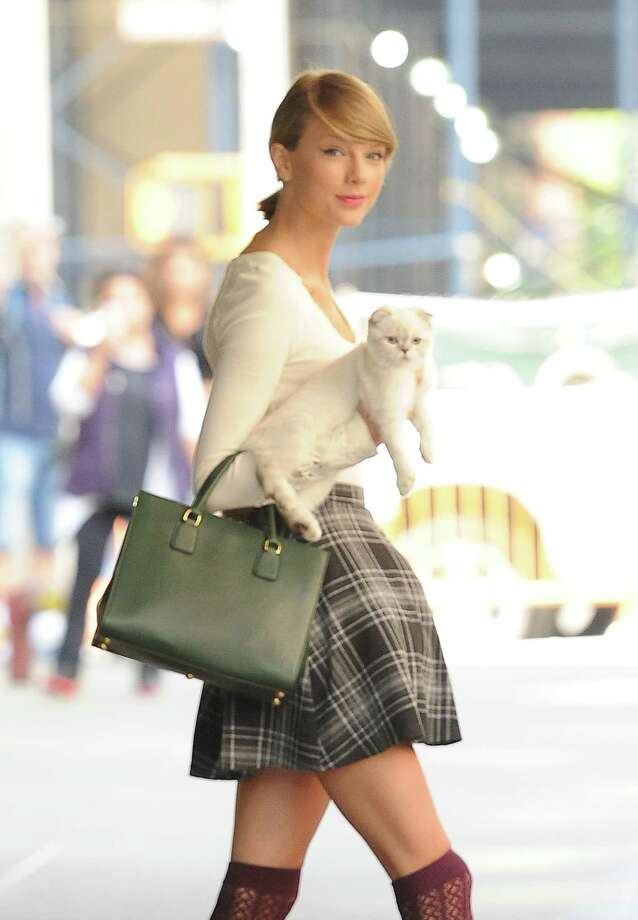 Taylor Swift with one of her cats. Photo: Raymond Hall, Contributor / 2014 Raymond Hall