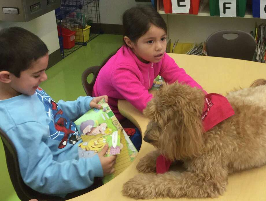 First-grader Kristen Jaramillo pets Lucky, while fellow first-grader Liam Gal reads to her Wednesday at Hamilton Avenue School. Photo: Paul Schott / Hearst Connecticut Media / Greenwich Time