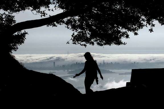 Danielle Roush is silhouetted against a view of fog rolling across the San Francisco skyline and into the bay, as seen from Grizzly Peak Boulevard in Berkeley.