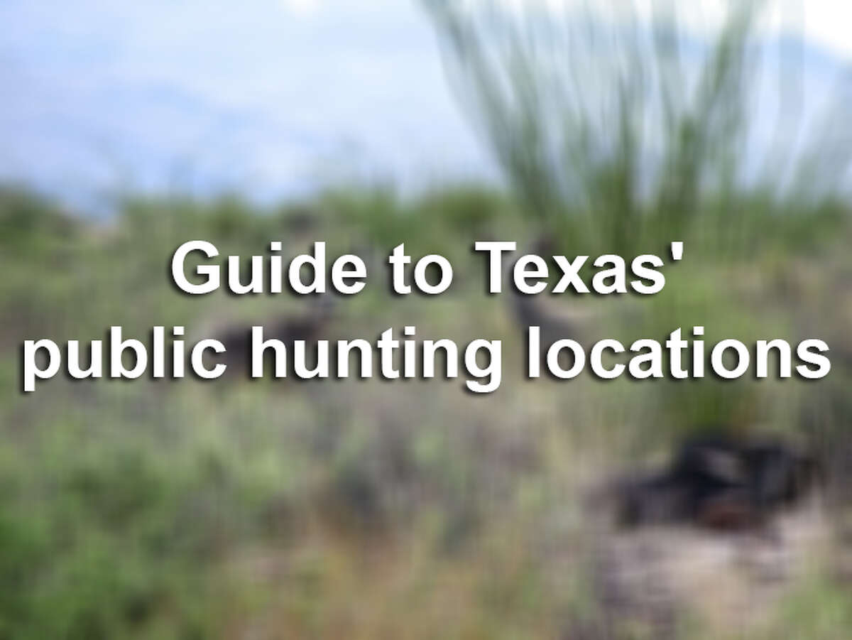 Scroll through for a look at some of the state's best public hunting locations.