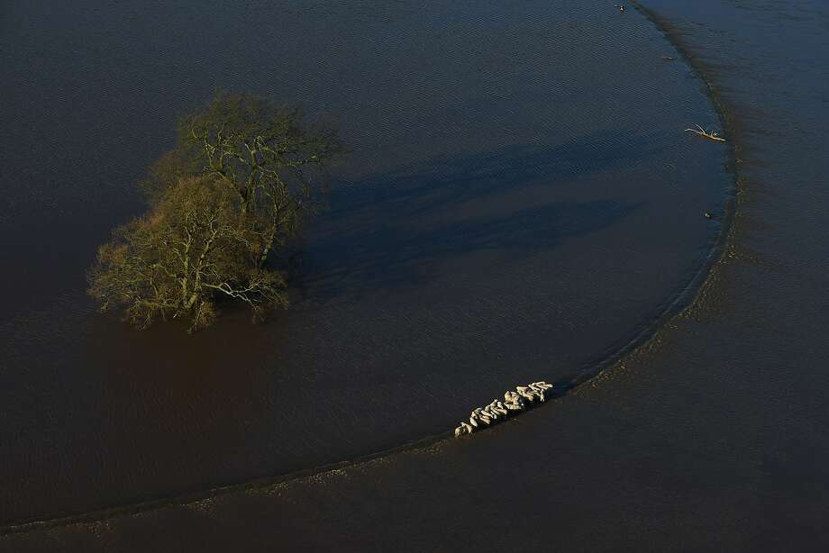 "A herd of sheep stand stranded in floodwater after the River Wharfe burst its banks in Cawood, North Yorkshire, England, Sunday, Dec. 27, 2015. Hundreds more people were told to leave their homes in northern England Sunday as Prime Minister David Cameron said more troops would be deployed to protect peoples' lives and property after weeks of heavy rainfall caused widespread flooding. Cameron said after an emergency Cobra ministerial meeting Sunday that the government would ""do whatever is needed"" to deal with the crisis. He called the rising waters ""unprecedented"" and promised a full review of contingency plans in the coming weeks. Police in the York area 200 miles (320 kilometers) north of London advised more than 300 people to leave their homes because of rising river waters. (Joe Giddens/PA via AP)     UNITED KINGDOM OUT       -     NO SALES      -     NO ARCHIVES Photo: Joe Giddens, Associated Press"