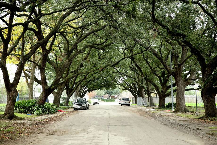 The shaded lots on Steel Street are empty because the slowing local economy has delayed plans for a residential tower. Photo: Elizabeth Conley, Staff / © 2015 Houston Chronicle