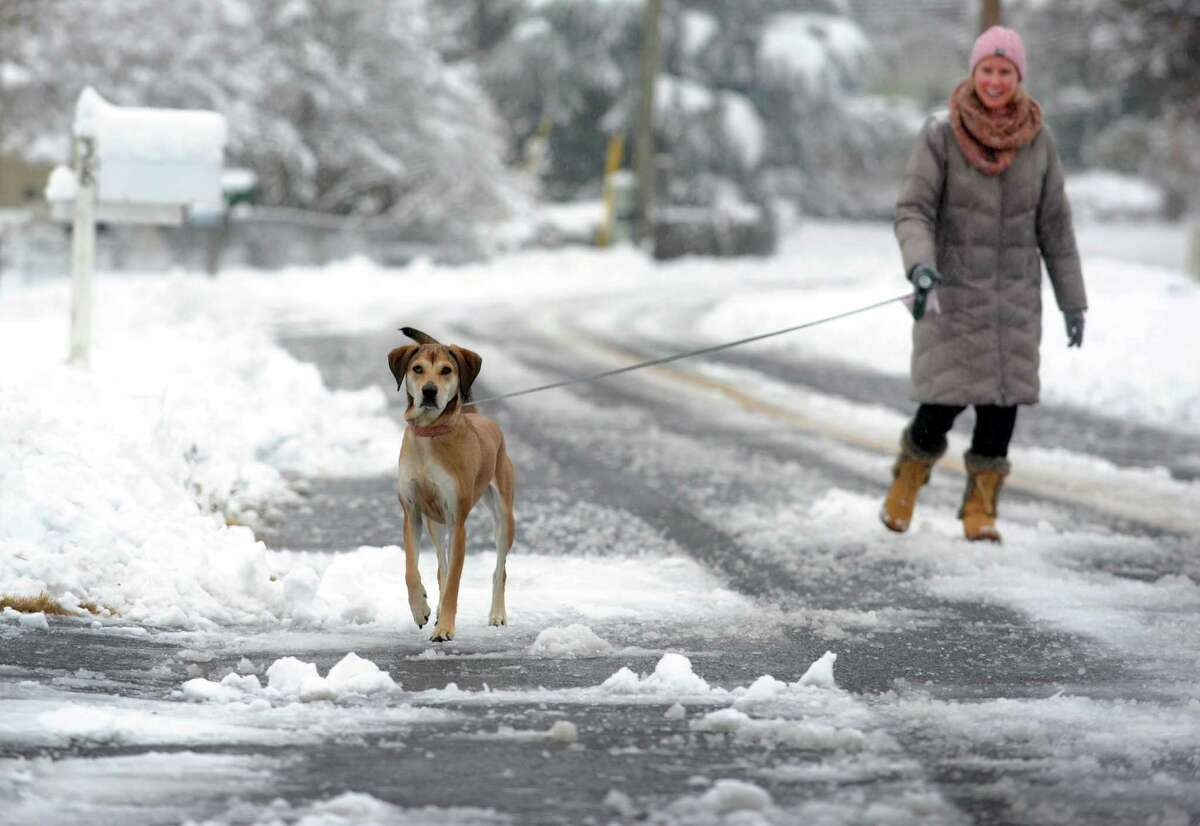 Kristen Hardiman walks her dog Barkley through the snow covered roads in Fairfield, Conn. on Saturday, Jan. 24, 2015. After an overnight accumulation, the snow transitioned to rain by late morning.