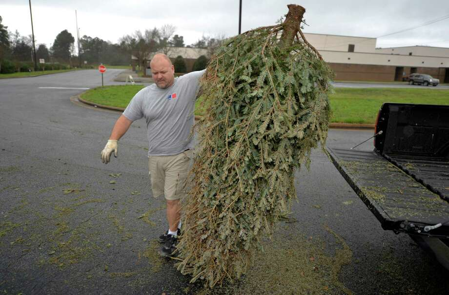 Milford officials are encouraging residents to recycle their Christmas trees. People can them to the Walnut Beach and/or the Tri-Beach Parking Lots on Saturday, Jan. 9, from 9:00 a.m. - 1:00 p.m.  The Department of Public Works will be there to chip the trees. Photo: File Photo / Associated Press / Augusta Chronicle