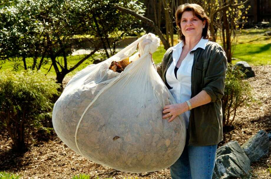 Cheesecloth May Help In Leaf Battle Stamfordadvocate