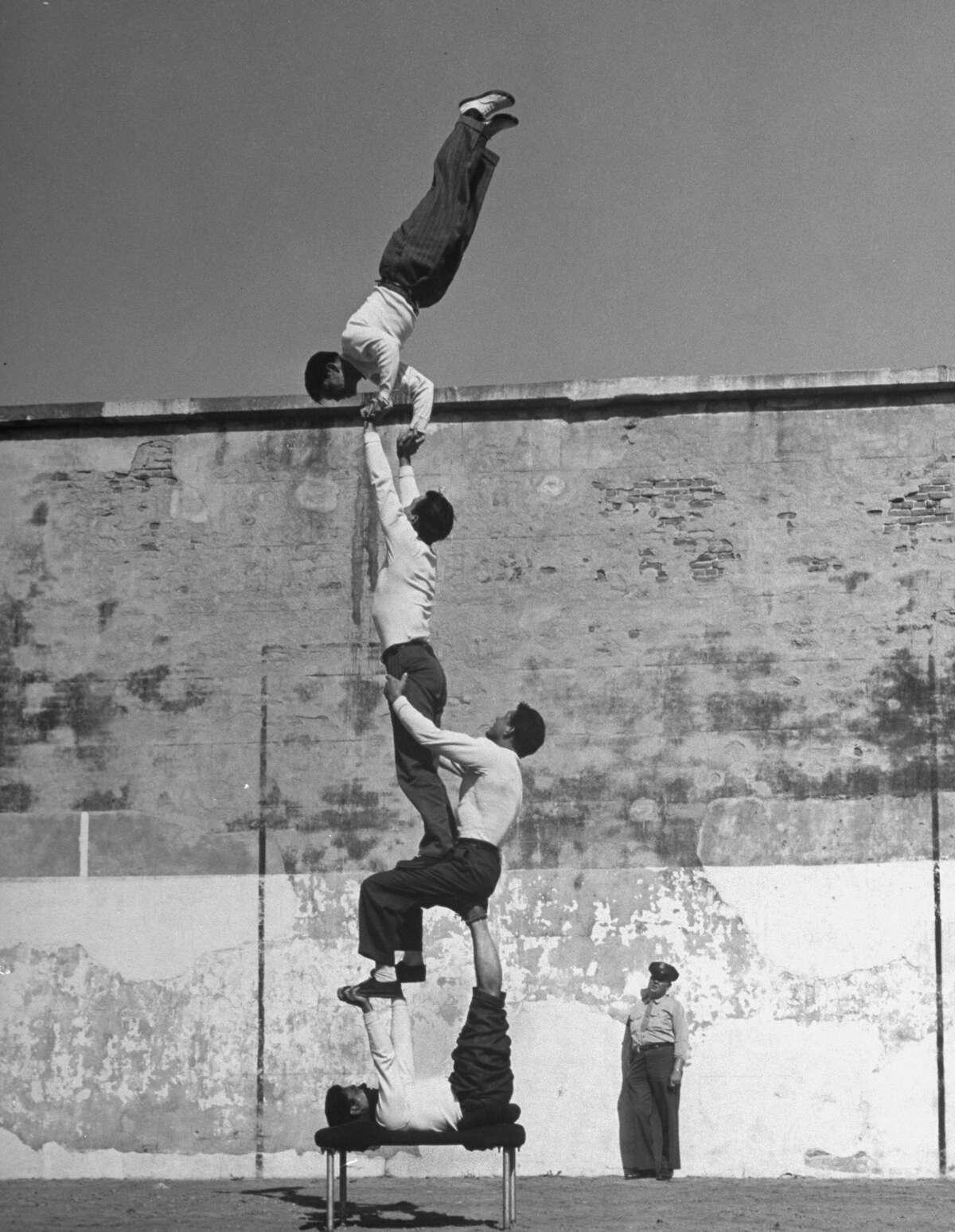Prisoners doing gymnastics at San Quentin Prison, 1947.