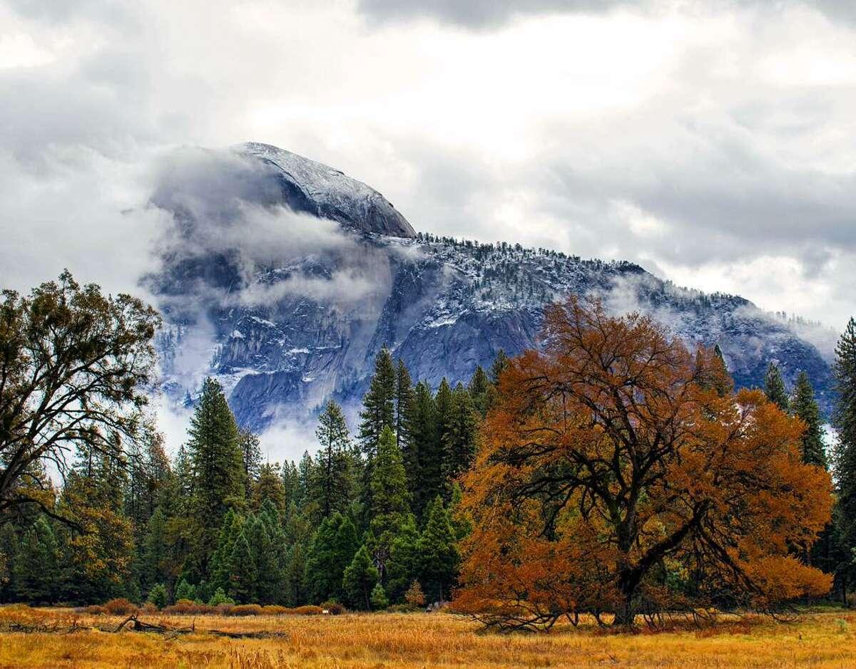 Yosemite has a vibrant nature scene even during the winter season.