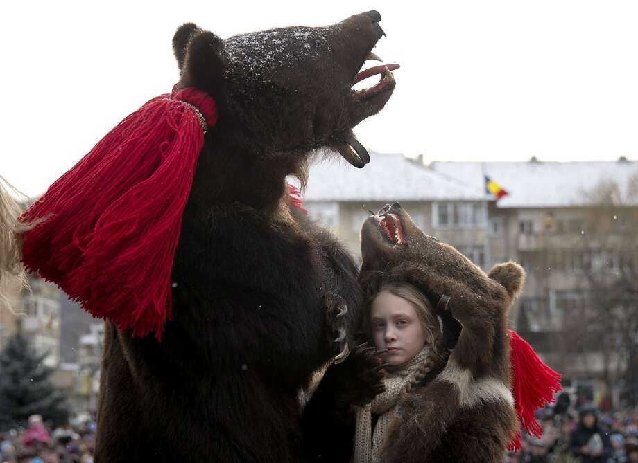 People wearing bear furs perform during a festival of New Year ritual dances attended by hundreds in Comanesti, northern Romania, Wednesday, Dec. 30 2015. In pre-Christian rural traditions, dancers wearing colored costumes or animal furs, toured from house to house in villages singing and dancing to ward off evil, in the present the tradition has moved to Romania's cities too, where dancers travel to perform the ritual for money. Photo: Vadim Ghirda, Associated Press