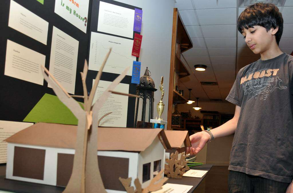 Eco friendly house science project