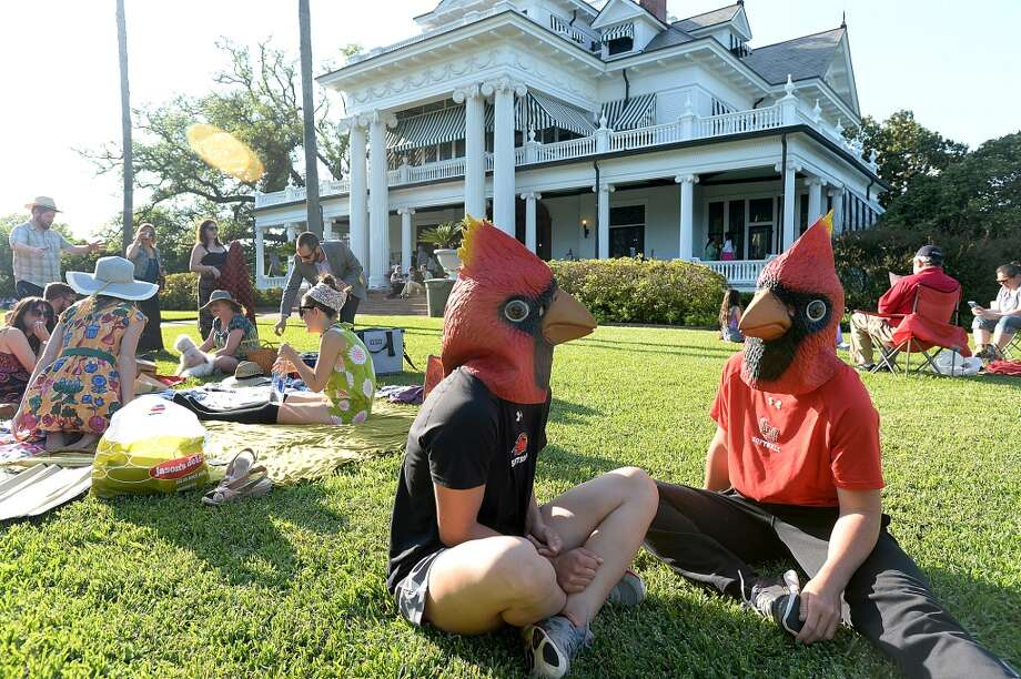 Cardinal heads at the McFaddin-Ward House spring picnic, downtown Beaumont. Photo taken Thursday, April 30, 2015 Kim Brent/The Enterprise Photo: Kim Brent/The Enterprise