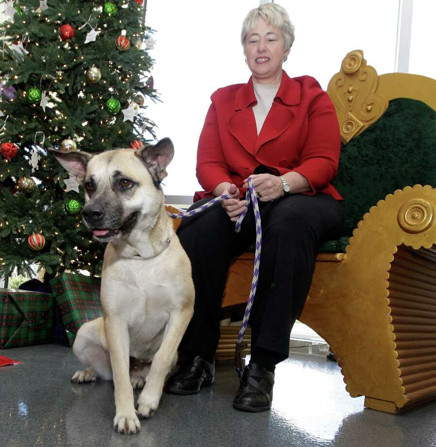City of Houston Mayor Annise Parker and a dog named Kiwi pose for a photo during her final Pet of the Week at BARC's new adoption center. Photo: Melissa Phillip / © 2015 Houston Chronicle